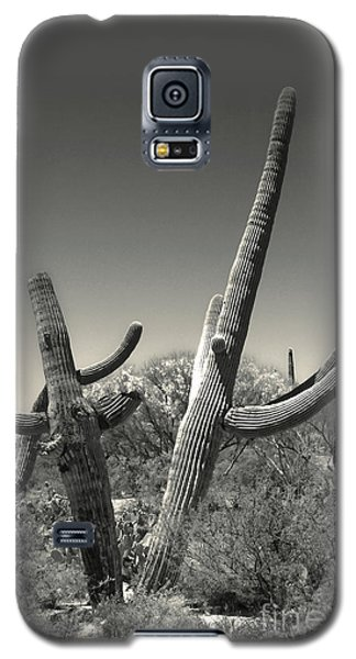 Cactus Galaxy S5 Case by Gregory Dyer