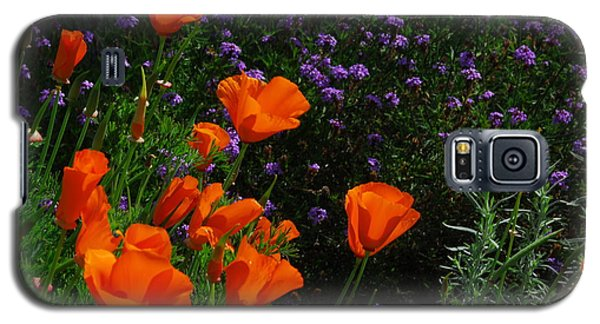 Galaxy S5 Case featuring the photograph California Poppies by Lynn Bauer