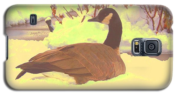 Canadian Goose Galaxy S5 Case by Larry Campbell