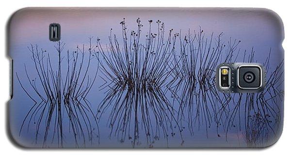 Cape May Meadows Galaxy S5 Case