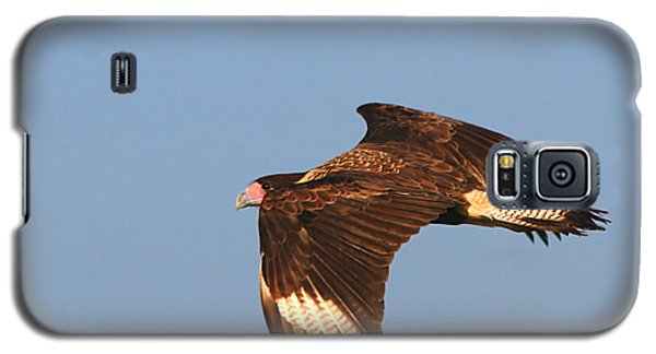 Caracara In Flight Galaxy S5 Case