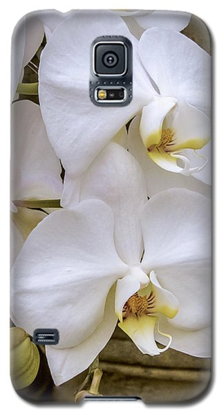 Cascade Of White Orchids Galaxy S5 Case