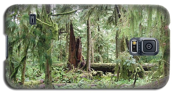 Galaxy S5 Case featuring the photograph Cathedral Grove by Marilyn Wilson