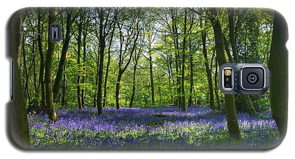 Chalet Wood Wanstead Park Bluebells Galaxy S5 Case
