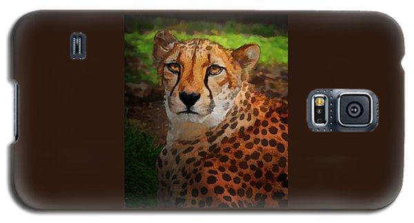 Cheetah Mama Galaxy S5 Case