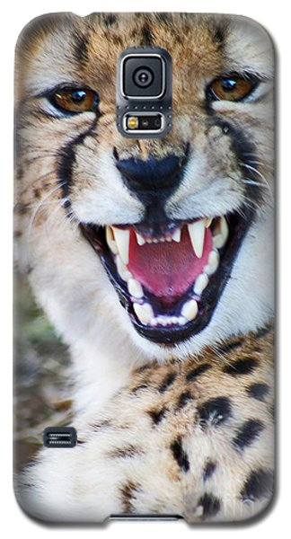 Galaxy S5 Case featuring the painting Cheetah With Attitude by Stanza Widen