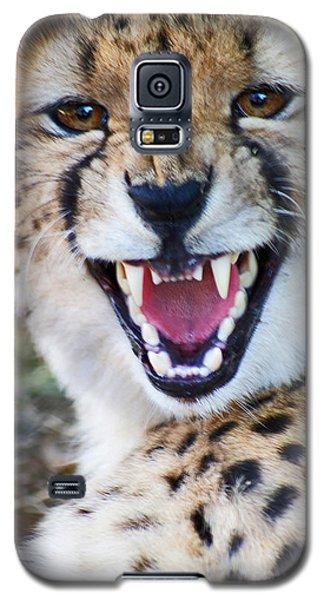 Cheetah With Attitude Galaxy S5 Case