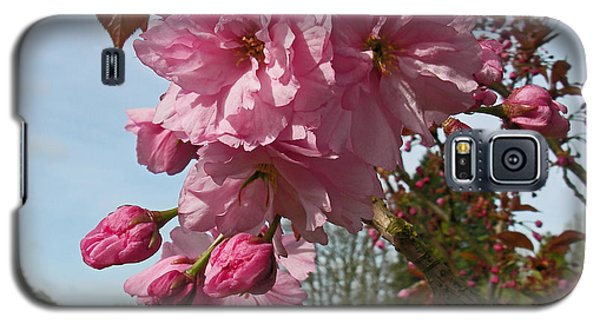Cherry Blossom Spring Galaxy S5 Case