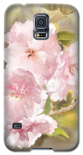 Cherry Blossoms Galaxy S5 Case by Francesa Miller