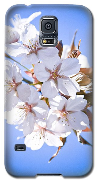 Cherry Tree Blossoms Close Up Galaxy S5 Case