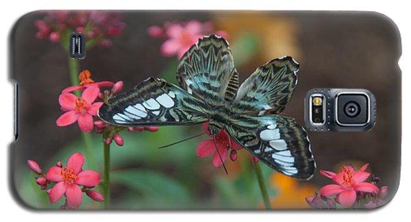 Clipper Butterfly 6150-052513-1cr Galaxy S5 Case