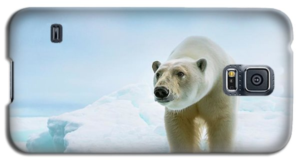Close Up Of A Standing Polar Bear Galaxy S5 Case by Peter J. Raymond