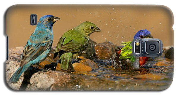 Colorful Bathtime Galaxy S5 Case