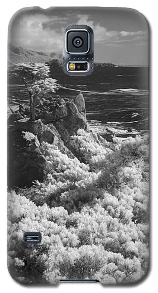 Cypress Point Galaxy S5 Case