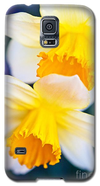 Galaxy S5 Case featuring the photograph Daffodils by Roselynne Broussard
