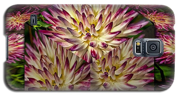 Galaxy S5 Case featuring the photograph Dahlia Art by Shirley Mangini