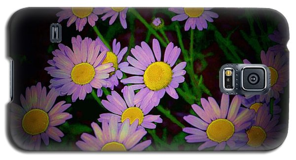Daisies I Galaxy S5 Case by Shirley Moravec