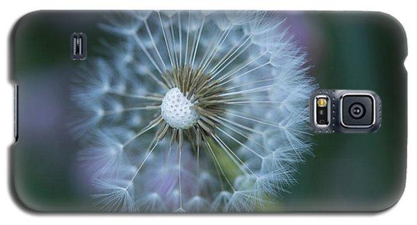 Dandelion Galaxy S5 Case by Alana Ranney