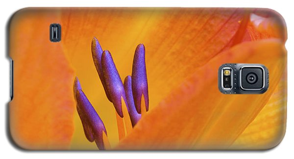 Day Lily  2 Galaxy S5 Case