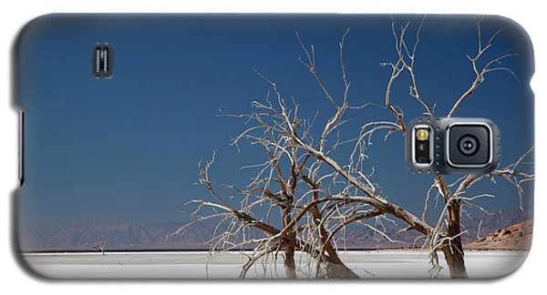 Dead Trees On Salt Flat Galaxy S5 Case by Jim West