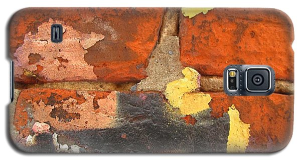 Decay Beauty Galaxy S5 Case by Alfred Ng