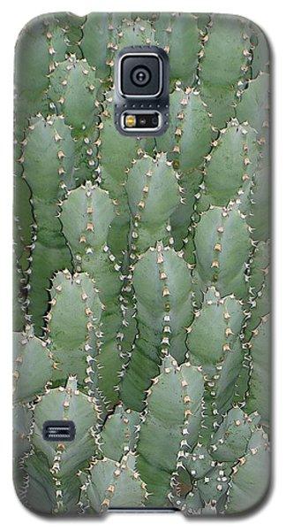 Desert Soldiers Galaxy S5 Case