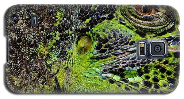 Details Iguana Galaxy S5 Case by Werner Lehmann