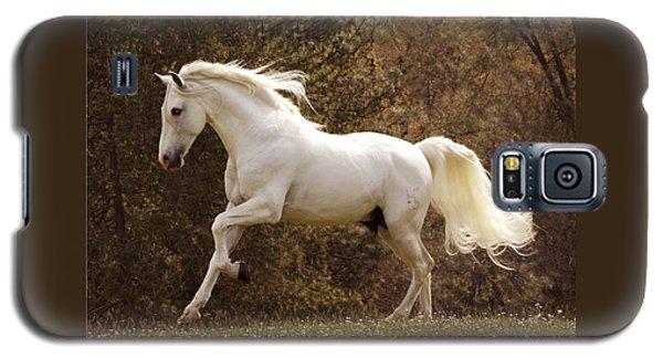 Dream Horse Galaxy S5 Case by Melinda Hughes-Berland