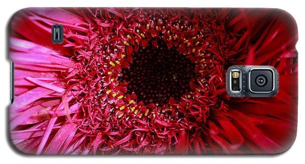 Dressy Galaxy S5 Case by Julie Andel