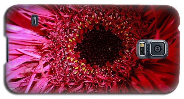 Dressy Galaxy S5 Case