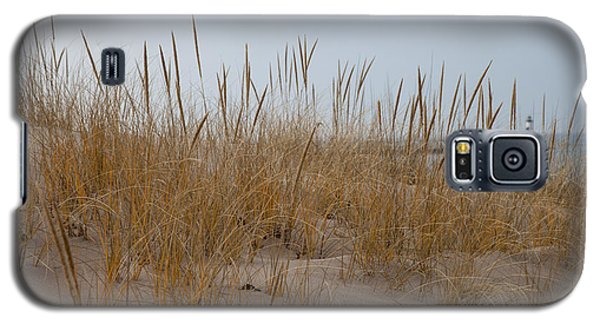 Dune Grass Galaxy S5 Case