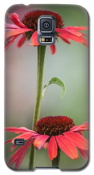 Galaxy S5 Case featuring the photograph Duo by Jacqui Boonstra