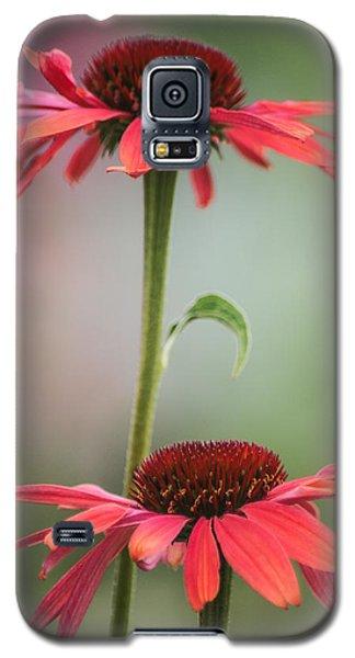 Duo Galaxy S5 Case