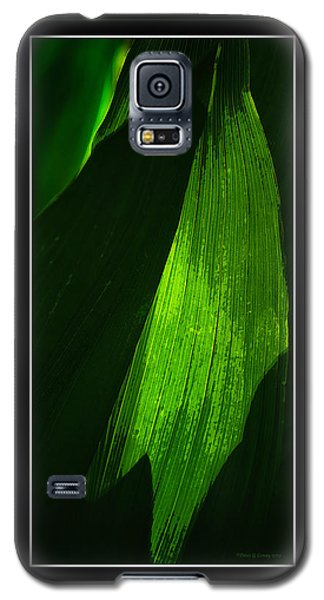 Dynamic Light Galaxy S5 Case