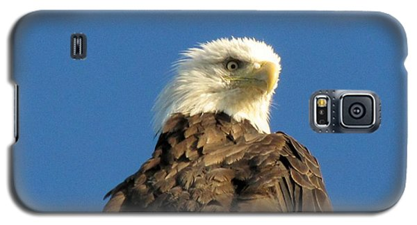Eagle On The Spit Galaxy S5 Case