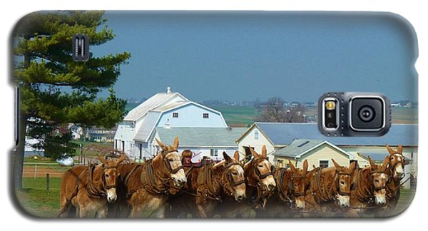 Galaxy S5 Case featuring the photograph Eight Horse Hitch by Jeanette Oberholtzer