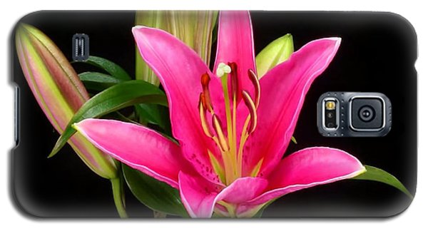 Erotic Pink Purple Flower Selection Romantic Lovely Valentine's Day Print Galaxy S5 Case by Navin Joshi