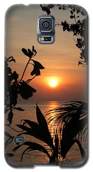 Galaxy S5 Case featuring the photograph Evening Sun by Elizabeth Lock