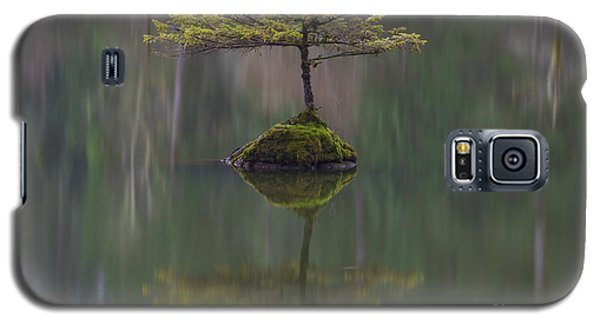 Fairy Lake Fir Galaxy S5 Case