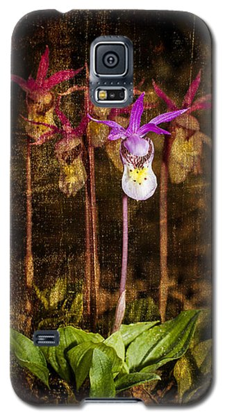 Fairy Slippers Galaxy S5 Case