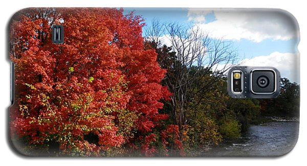 Fall At The Credit River Galaxy S5 Case by Pema Hou