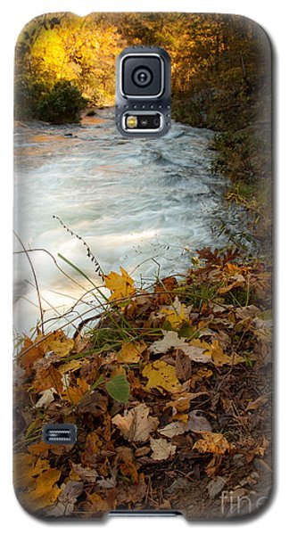 Fallen Leaves Galaxy S5 Case by Iris Greenwell