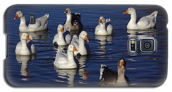 Family Goose Galaxy S5 Case
