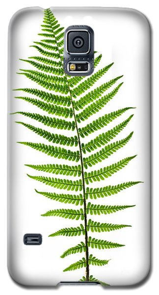 Fern Leaf Galaxy S5 Case