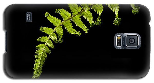 Fern With Raindrop Galaxy S5 Case