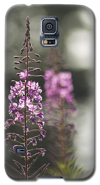 Galaxy S5 Case featuring the photograph Fireweed by Yulia Kazansky