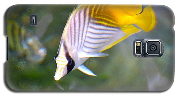 Galaxy S5 Case featuring the photograph Fish In The Sunlight  by Lehua Pekelo-Stearns