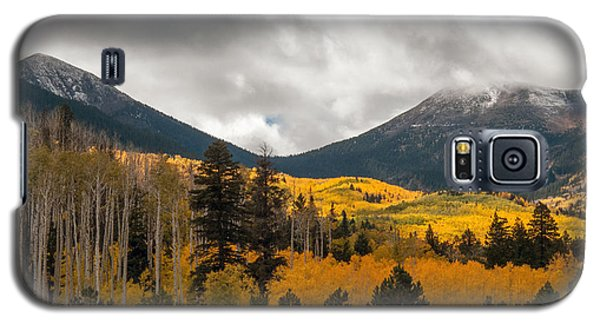 Flagstaff Fall Color Galaxy S5 Case