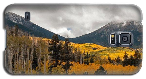 Flagstaff Fall Color Galaxy S5 Case