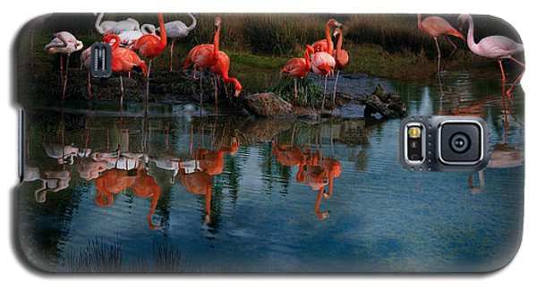 Flamingo Convention Galaxy S5 Case